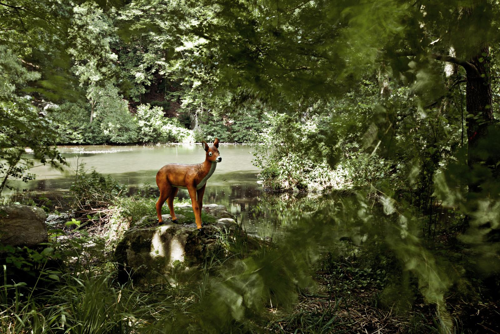 Doris in the wood