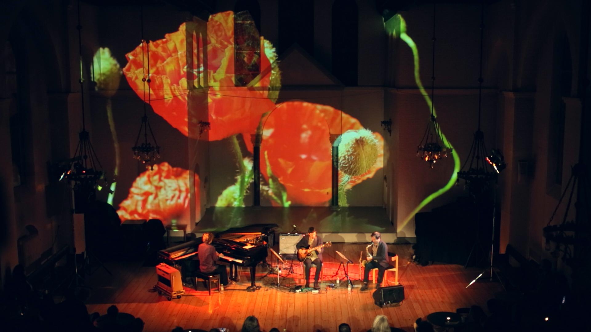 Concert3ElementswEvaKochConcert.00_01_07_16.Image fixe001