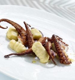 Le Poulpe - Le tentacule à la Galicienne, gnocchi de pomme de terre -  Miguel Marroquin
